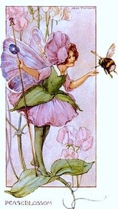 Peaseblossom Fairy by Cicely Mary Barker                                                                                                                                                     More