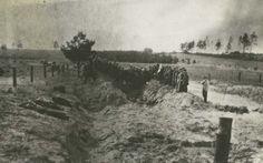 Mass Grave of Murdered Jews Discovered near Iwje, Poland, November 1945