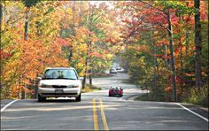 Door County - Cty Rd 42 from the ferry landing at Northport is famously winding and beautiful in the fall.