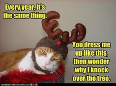 Ha Ha!!  This is for my sister Cathie!!