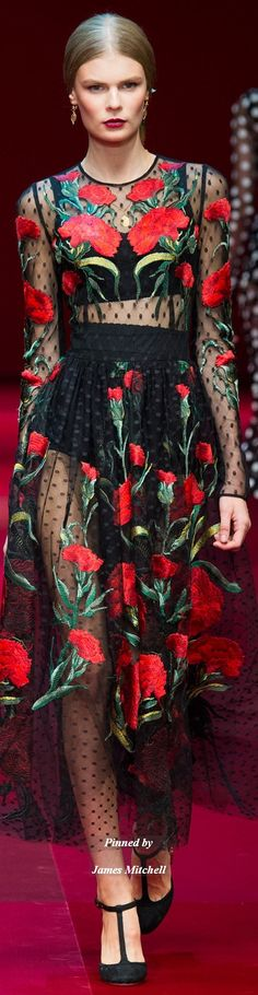 Dolce & Gabbana Collection  Spring 2015 Ready-to-Wear