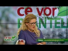 ce vor plantele cristina ghibu 2019 08 14 partea2 1053 - YouTube Science And Technology, Videos, Youtube, Video Clip, Youtube Movies