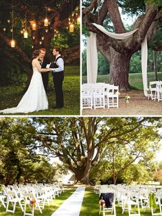 tree as ceremony backdrop