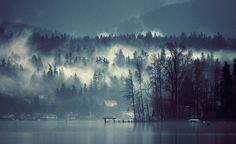 SPARTH - fog on Lake Sammamish. 2010-2011