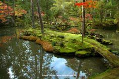 Kokedera (Moss Temple) Kyoto Japan 2009