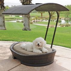 Harvest Casual HCF-IND Rancho Pet Shelter $138.45