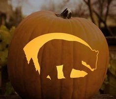 Pin By Robin White On Football Pumkin Team Spirit Pumpkin Carving