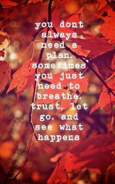 Breathe. Trust. Let go, and see what happens...