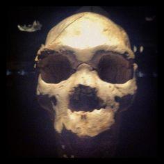 #calavera #skull