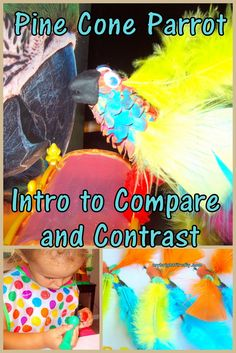 Letter P is for Pinecone Parrot. Invitiation to Play: Compare and Contrast. Creative ABCs - Preschool Alphabet Activities and Crafts.