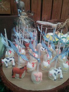 Cake pops at a Farm Party #farm #party