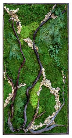 """""""The Woodlands"""" Plant Painting- Large (care-free preserved green-wall art) Frames are made of reclaimed (upcycled) wood real plants / Light weight / No care or sunlight required / Non toxic Hanging hardware attached Indoor Garden, Garden Art, Indoor Outdoor, Moss Wall Art, Moss Art, Vertikal Garden, Vertical Garden Plants, Woodland Plants, Green Wall Art"""