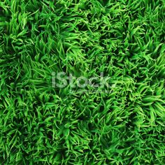Pattern stock photos & images - iStock
