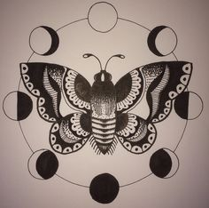 Moth surrounded by moon phases, ink on paper