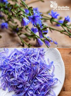 Magic Herbs, Fiber Foods, Healing Herbs, Nutrition, Edible Flowers, Medicinal Plants, Health Advice, Natural Medicine, Detox