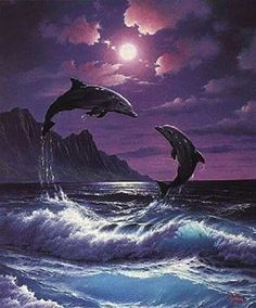 Joey Brumbaugh uploaded this image to 'Ocean-Pictures/Dolphins'. See the album on Photobucket. Orcas, Beautiful Creatures, Animals Beautiful, Dolphins Tattoo, Dolphin Art, Water Animals, Wale, Delphine, Ocean Creatures