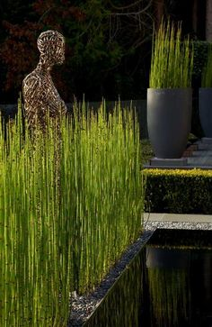 Tall crucible pots with Equisetum