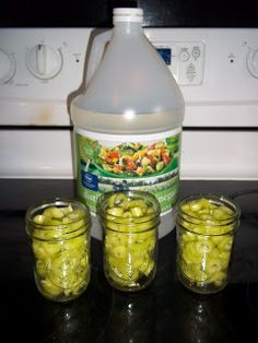 Keeping Up With The Pruetts: Canning Banana Peppers