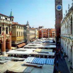 Vicenza Marketplace - Piazza dei Signori