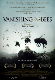 Pictures & Photos from Vanishing of the Bees (2009)