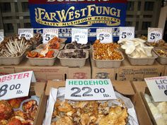 An amazing array of mushrooms at the San Francisco Farmer's Markets – cooks-notebook.com.au