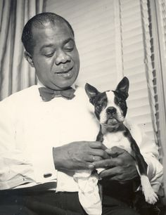 """Louie Armstrong """"Satchmo"""" with his Boston Terrier dog Boston Terrier Love, Boston Terriers, Terrier Breeds, Terrier Puppies, Dog Breeds, Louis Armstrong, Vintage Dog, Dog Photos, Mans Best Friend"""