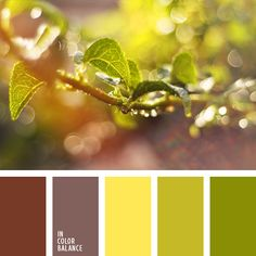 Yellow and green color inspiration