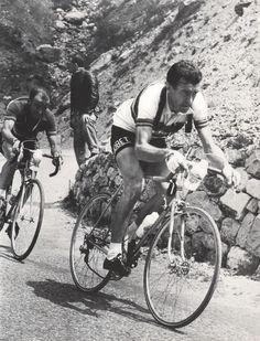Tour de France 1955. 9^Tappa, 15 luglio. Briançon > Monaco. Col de Vars. Louison Bobet (1925-1983) e Giancarlo Astrua (1927-2010) in discesa