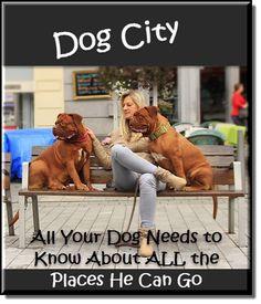 Dog City - Where to