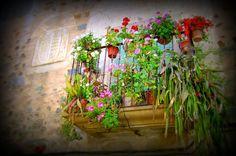 Casas señoriales, balcones floridos, estos son los vestigios de antes que aún están vivos en  Sierra de Gata