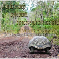 #entrepreneur #exito #enterprises #upline #df  #thebest #jimrohn #millonarios #EUA#worldwide #world #herbalife #followme #success #instashot #f4f #like4like #love #presidentsteam #networkmarketing #no1 #picoftheday #god #dinero #money #mentesmillonaria#tapfor1000likes #clickfor5kfollows kfor5kfollows #hitfor2000follows by famous_world_business