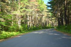 Pog Lake Algonquin Park Ontario Canada Algonquin Park, Ontario, Country Roads, Canada, Summer, Summer Time, Summer Recipes