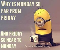 Why is monday