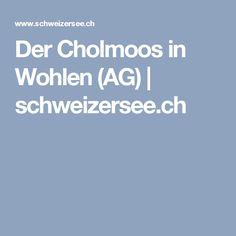 Der Cholmoos in Wohlen (AG)   schweizersee.ch Kanton, Seen, Environment, Weather, Switzerland