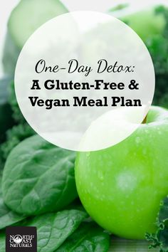 1-Day Detox Meal Plan - Cleanse and Re-Set for the New Year! Vegan, Gluten-Free, Healthy, Simple
