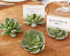 96 Faux Succulent Cactus Place Card Holder Rustic Garden Wedding Table Decor