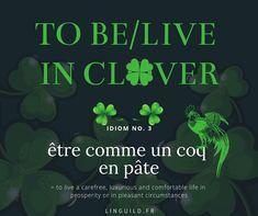 English idiom: To be/live in clover 🍀 Cette expression vient du folklore irlandais. 🐑 C'est donc un des symboles forts de la Saint Patrick. ☘️ Vous trouverez plus d'infos (fiches vocabulaire, culture...) à ce sujet en cliquant sur l'image. #EnglishIdioms #Idioms #Anglais #EnAvantAnglais #AméliorerSonAnglais #VocabulaireAnglais #ApprendreAnglais  LinguiLD /Idioms/  (Design by LinguiLD) Fete Saint Patrick, Common English Idioms, Forts, Live, Folklore, St Patricks Day, Culture, Design, Improve English
