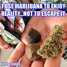 Why do you smoke weed?