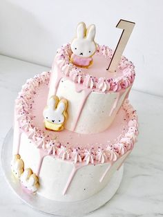 Candy Birthday Cakes, Baby First Birthday Cake, Miffy Cake, Luxury Cake, Cake Decorating For Beginners, Baby Girl Cakes, Cake Smash Photos, Drip Cakes, Cute Cakes