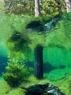 being underwater is fascinating!