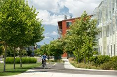 SWA has done a number of sustainable landscape projects. Check them out here.