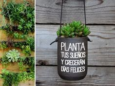 Macetas creativas - Plantas - Reciclados Megapost - Taringa!