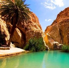 I've been all over Morocco and can't guess where in Morocco this is….but I want to go there!