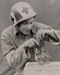 US Medic from the Medical Battalion Feeding a Couple of Baby Birds During World War II, est. x US Medic from the Medical Battalion Feeding a Couple of Baby Birds During World War II, est. War Photography, Vintage Photography, History Magazine, Jolie Photo, Second World, Historical Pictures, Vietnam War, Military History, Military Photos