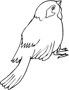 Top 20 Free Printable Bird Coloring Pages Online Kids colouring