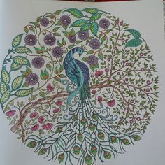 From The Book Secret Garden Johanna Basford