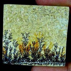 113.85Cts. 100% Natural Designer Psilomelane Dendrite Octagon Cabochon Gemstones #Handmade