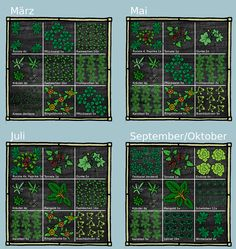 Grafik Pflanzvorschlag You are in the right place about perennial Garden Planning Here we offer you the most beautiful pictures about the bhg Garden Planning you are looking for. Vegetable Garden For Beginners, Gardening For Beginners, Gardening Tips, Container Gardening Vegetables, Vegetable Gardening, Square Foot Gardening, Small Space Gardening, Back Gardens, Permaculture