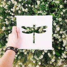 L'artiste Nikolai Tolsty se sert de la beauté et de la richesse de Mère Nature pour colorer ses oeuvres. Le papier étant son médium de prédilection, Nikolai sculpte une élégante silhouette animale dans une feuille puis il la superpose sur un paysage naturel (fleurs, feuilles, tronc d'arbre…) et photographie la scène.  Il recherche toujours un fond authentique, naturel et visuellement attrayant. Bouquet de fleurs colorées, feuilles d'automne fraîchement tombées, l'artiste utilise…