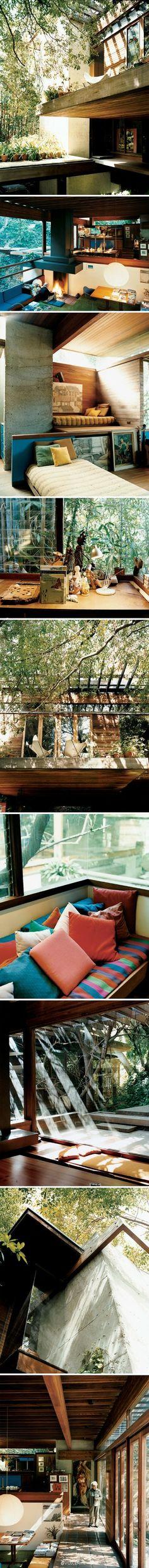 建筑师Ray Kappe于1967年在加州Pacific Palisades的峡谷中建造的自宅。(photo by João Canziani) B162 - 堆糖 发现生活_收集美好_分享图片
